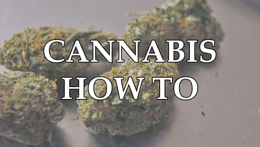 cannabis-how-to